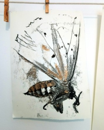 monoprint of a deceased white ermine moth (from my own photo)