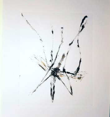 monotype of the same daddy long legs
